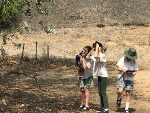 Students from St Josephs primary in Uralla taking part in the annual Birds Australia bird count.