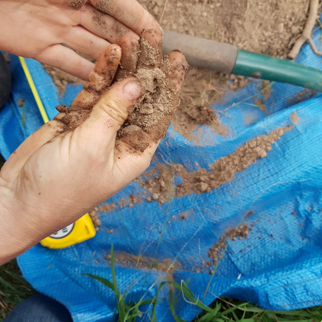 Ribbon Test: To test for the soil texture and level of clay in the soil.